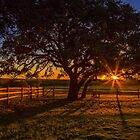 Sunset in Texas by Colin Bester