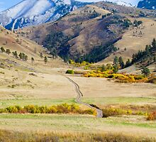 Get Lost in Montana by daysray