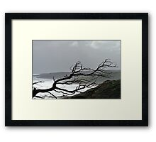 Skeleton in the Storm Framed Print