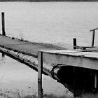Pacific Northwest Dock by Samuel Schaar