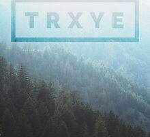 TRXYE forest by Megollivia