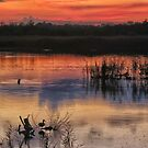 Sunset at Strumpshaw by Mortimer123