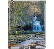 Autumn at Cauldron Falls iPad Case/Skin