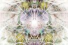 Caught in the Net by Benedikt Amrhein