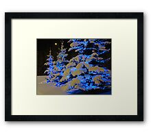 The Beauty Of Winter Framed Print