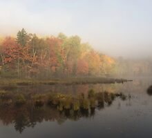 Fall colours over a lake in the early morning by Josef Pittner
