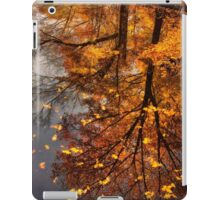 Fall Reflection  iPad Case/Skin