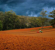 Working the Fields by DavidsArt