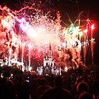 Magic Kingdom by David Lamb