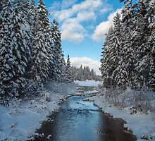 Winter Creek by daysray