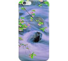 SPRING,MIDDLE PRONG LITTLE RIVER,TREMONT iPhone Case/Skin