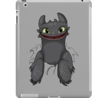 Curious Toothless iPad Case/Skin