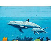 Dolphins graffiti mural Photographic Print