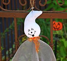 All set for Halloween ! by pmarella