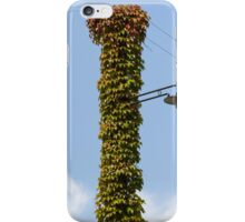 lamppost wrapped in ivy iPhone Case/Skin
