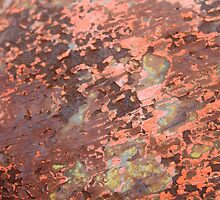 Rusted peeling paint - 2011 by Gwenn Seemel