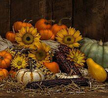 Fall Assortment by randywalton