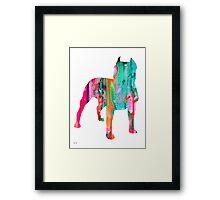 Pit Bull 3 Framed Print