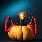 Pumpkin Power by billyboy
