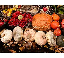 Fruits of Autumn Photographic Print
