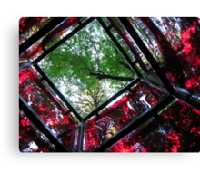 square cube of nature Canvas Print