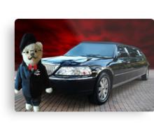 Teddy Bear Limousine Chauffeur Card/Picture Metal Print