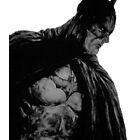 Batman by scoop314