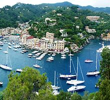 Portofino Panorama by Trish Meyer
