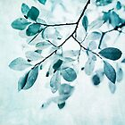 Leaves in dusty blue by Priska Wettstein