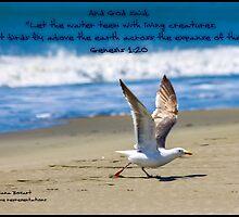 Bible Verse Genesis 1:20 by DianaBozart