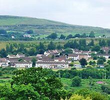 Welsh Miner's Cottages by Trish Meyer