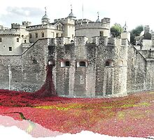 Tower of London remembers Sherborne's First World War fallen by SkatingGirl