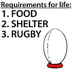 Food Shelter Rugby by kwg2200