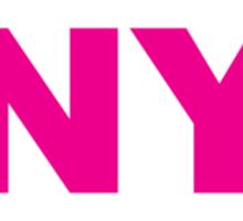 New York NY Euro Oval PINK Sticker