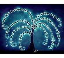 The Tree of Stars Photographic Print