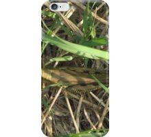 Grasshopper In Cammo iPhone Case/Skin