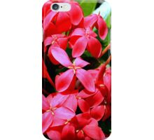 Small Red Flowers iPhone Case/Skin