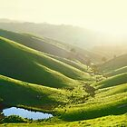 Green Hills, Gippsland, Victoria, Australia by Michael Boniwell