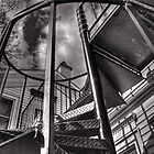 Spiral Stairs by Roger Passman