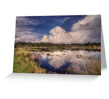 Reflections of the Florida Wetlands Greeting Card