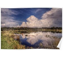 Reflections of the Florida Wetlands Poster