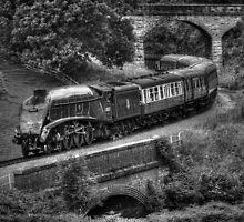 Sir Nigel Gresley Locomotive - Black and White by © Steve H Clark