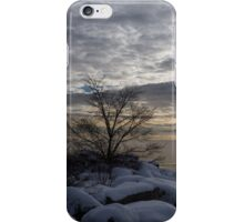 Lakeside Silver – Winter Morning Light iPhone Case/Skin