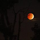 Lunar moon 10/08 by ANNABEL   S. ALENTON