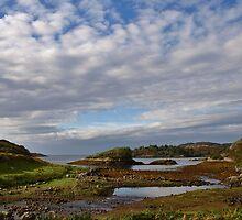 West Coast Scottish Highlands by David  Williams