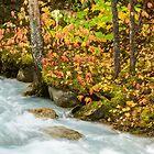 Robson River by Jim Stiles