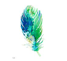 Feather 2 Photographic Print