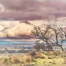 Storm Tree Pastel by Candice84