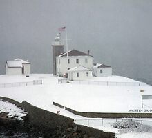 snowfall on the watch hill lighthouse by Maureen Zaharie