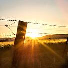 Fence Post Sunset Silhouette by Candice84